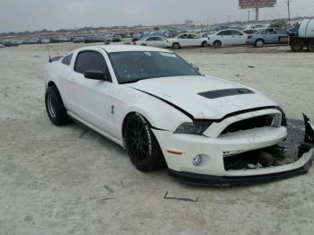 Salvage Ford Shelby GT500